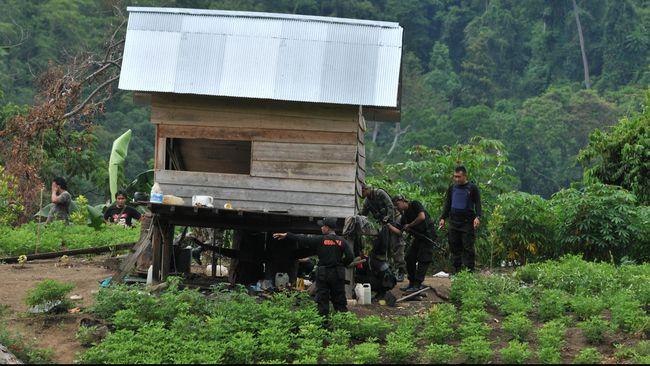 Pegunungan Sulawesi Tengah yang menjadi benteng pertahanan kelompok Teroris Santoso (Foto :ANTARA/ Fiqman Sunandar)