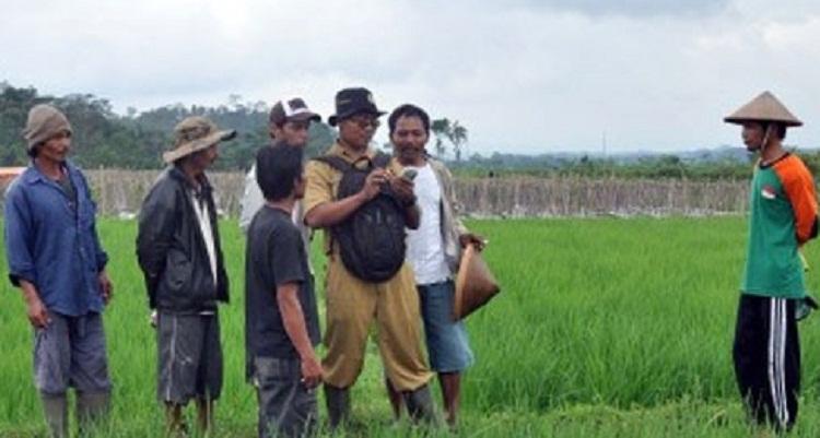 Tenaga Penyuluh Pertanian Adalah Ujung Tombak Keberhasilan
