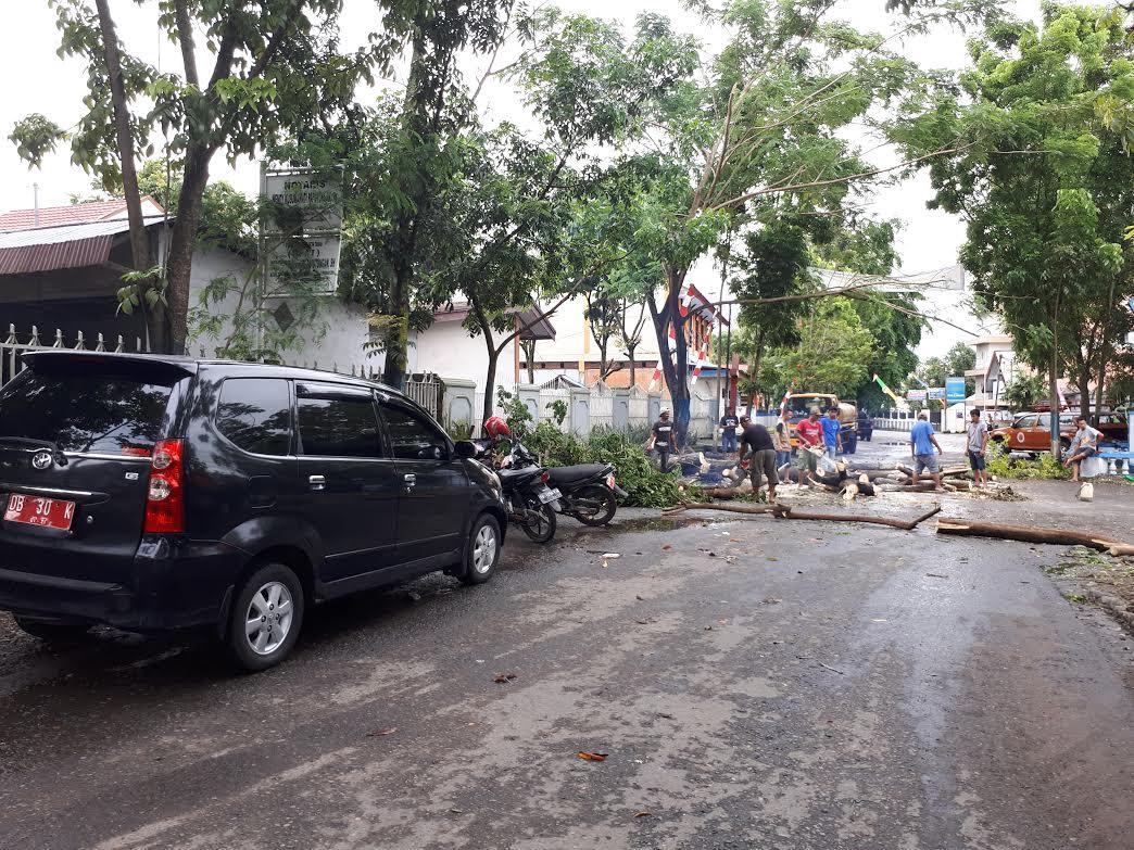 Kantor Kelurahan Kotamobagu, Nyaris Tergilas Pohon Trambesi
