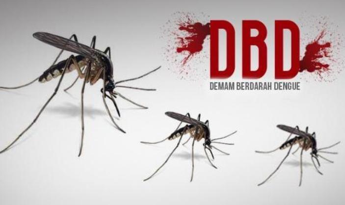 Berantas Nyamuk DBD, Dinkes Tunggu Rujukan dari RSU di Kotamobagu