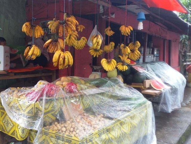 Wabah Corona, Omset Penjualan Buah-Buahan Mama Fitri Masih Bertahan