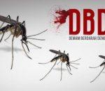 Musim Hujan, Warga Kotamobagu Waspadai Nyamuk Aedes Aegypti