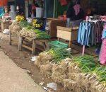 Yuk Buruan, Pekan Ini Harga 1 Bal Batang Bawang di Pasar 23 Maret Hanya Rp10 Ribu