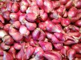 Harga Bawang Putih dan Merah Masih Bertengger Rp50 ribu perkilogram di Pasaran Kotamobagu