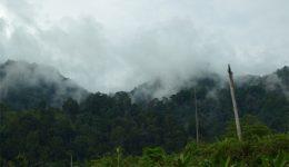 Mengenang Ksatria 'Ninja' di Peti Taman Nasional Dumoga-Bone 1992-2000 (1)