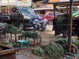 Harga Sayur Mulai Meroket di Pasaran Kotamobagu