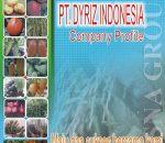 PT Dyriz Indonesia, Buka Lowongan Kerja di Bolmong Raya