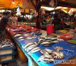 Hingga Pekan Ini, Harga Ikan Laut di Pasar Serasi Murah Meriah