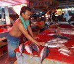 Pedagang Ikan Dapat Bantuan Cool Box