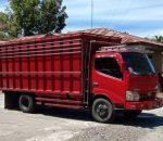 Babuk Kayu Cempaka 9,6 Kubik di Polres Bolmong Dipertanyakan