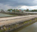 Pembudidaya Ikan Berharap Pemkot Kotamobagu Membangun Pabrik Pakan Ikan