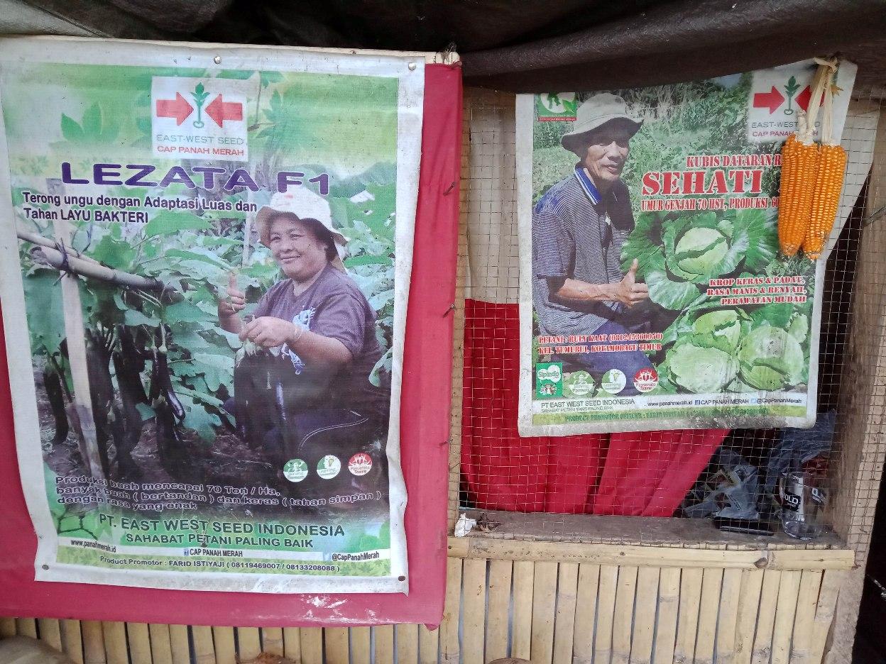 Petani Asal Tumobui Ini, Butuh Bantuan Hand Tractor