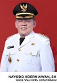 Nayodo Koerniawan Sarankan Sangadi Gunakan Anggaran Desa Untuk Penanggulangan Covid 19
