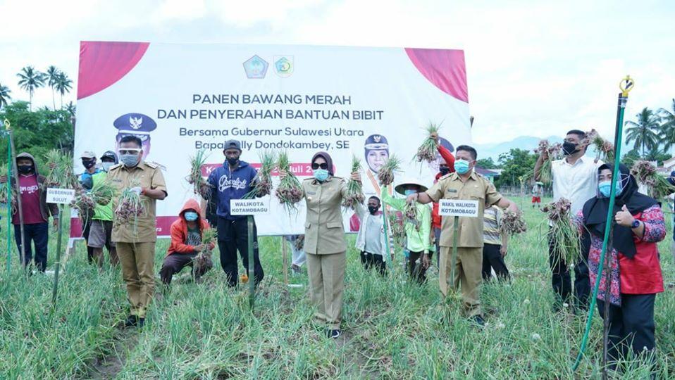 Gubernur Sulut Tinjau Panen Bawang Merah dan Jagung di Kotamobagu