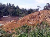 Banyak Warga Kotamobagu di Pertambangan Emas Ratatotok, Saat Ini Dihebohkan Ada Wabah Covid 19
