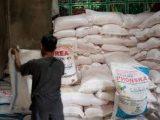 Dapat Pupuk Subsidi Petani Harus Kantongi Kartu Tani