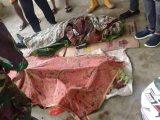 Tabrak Pohon Tumbang Dijalan, Dua Guru Madrasah Tsanawiah Di Bolmong Tewas Ditempat
